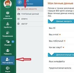 заполнение личных данных на seosprint net